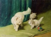 White Persian Cat with Two Kittens